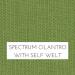 Spectrum Cilantro with Self Welt +$96.00
