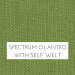 Spectrum Cilantro with Self Welt +$48.00