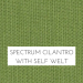 Spectrum Cilantro w/ Self Welt