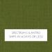 Spectrum Cilantro w/ Self Welt +$13.00