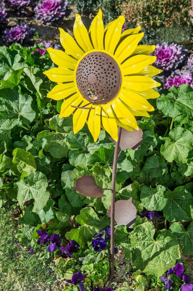 Desert Steel Sunflower Bird Feeder