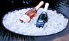 Optional Ice Bucket Instert